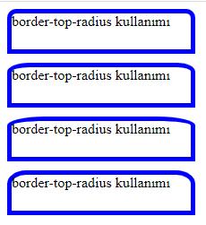 border-top-radius ornegi