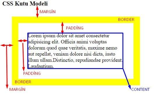 css kutu modeli örnek sonucu