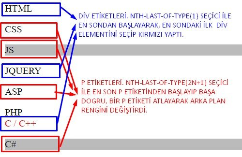css nth last of type kullanımı