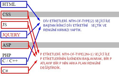 css nth of type kullanımı