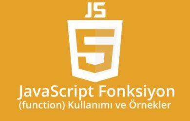 javascript fonksiyon kullanımı ve örnekleri